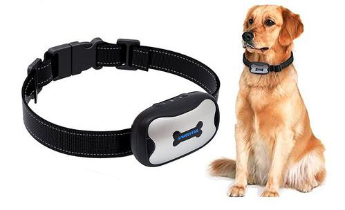 Best Dog Barking Deterrent (in September 2019) - Brand Reviews