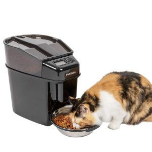 automatic wet cat food feeder
