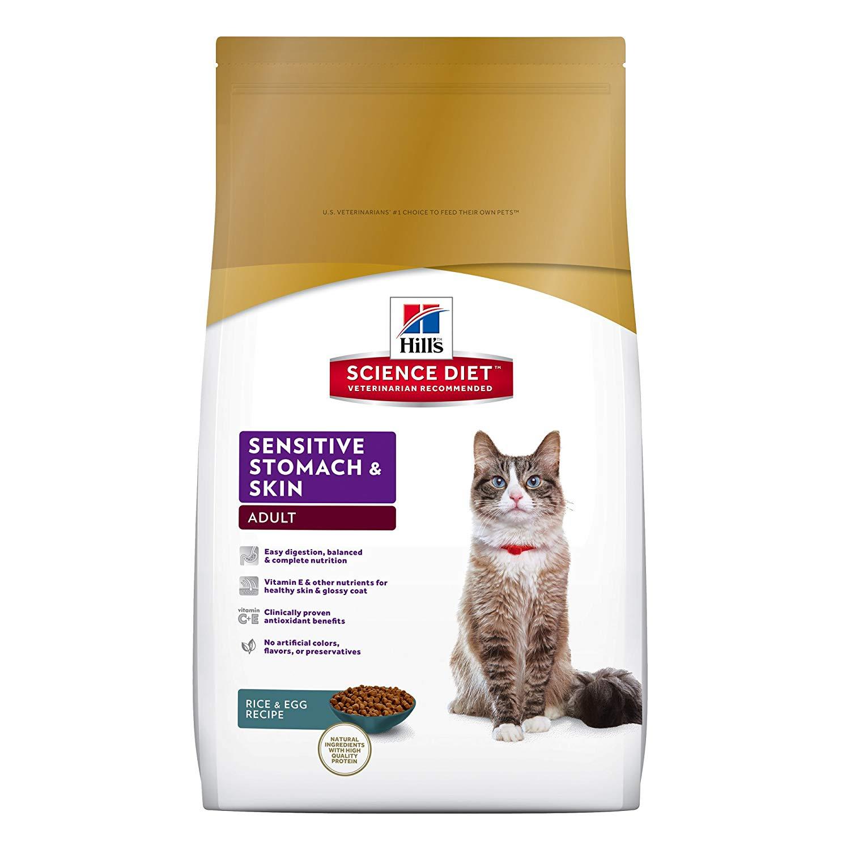 Best Cat Food to Prevent Vomiting (September 2019)