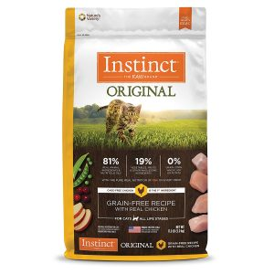 best cat food for cat that throws up