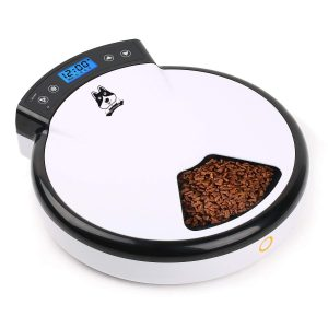 automatic feeder cats