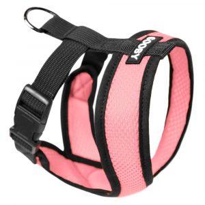 french bulldog puppy collar